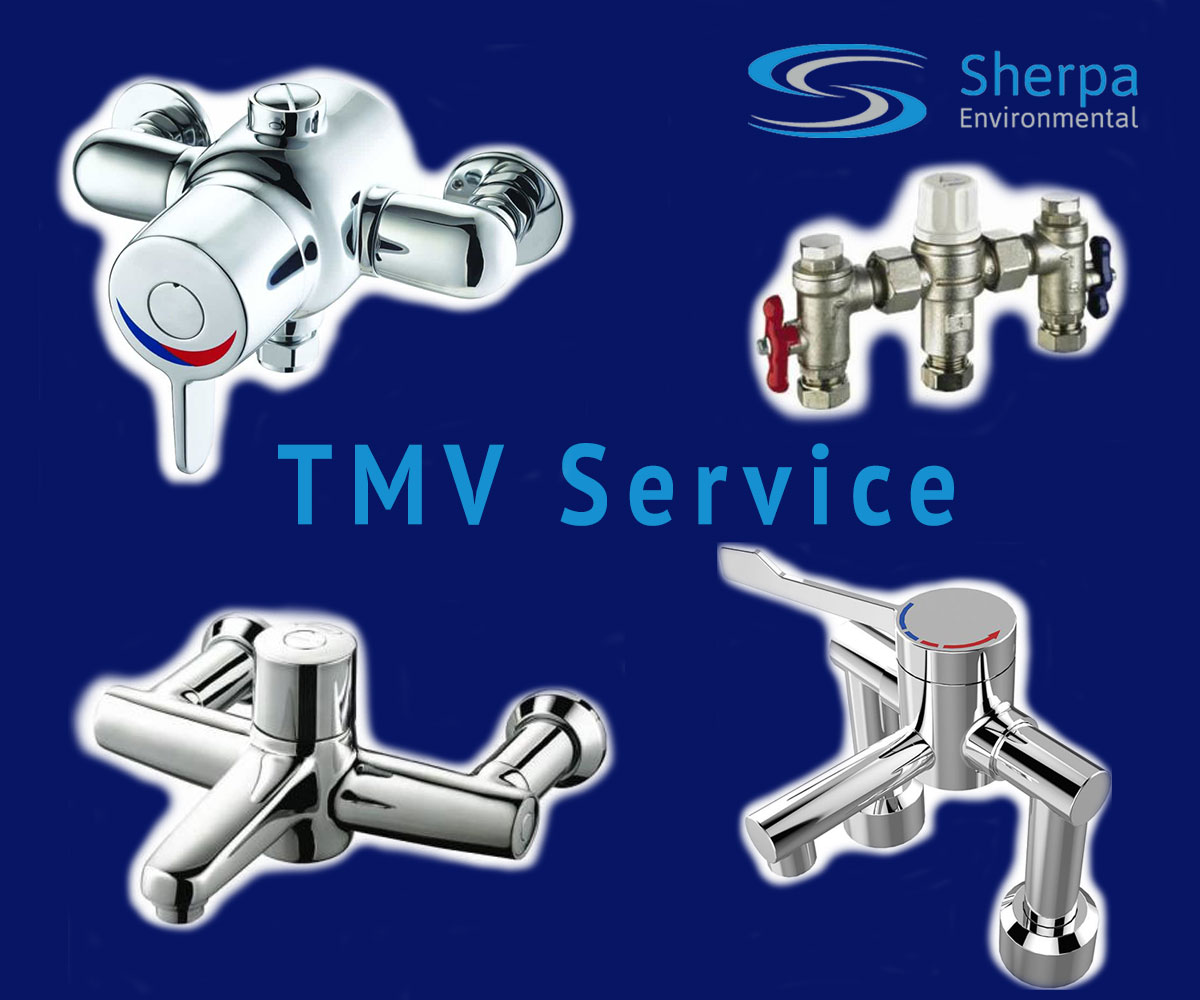 TMV Service